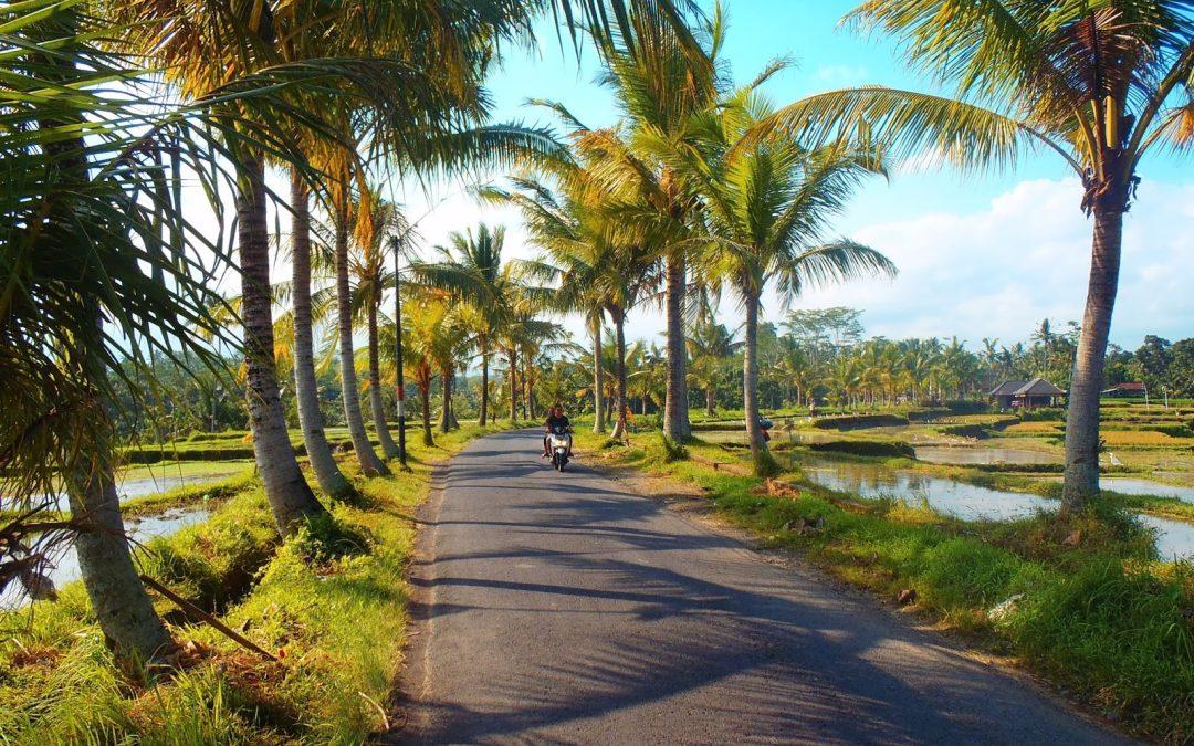 Comment aller de Denpasar à Ubud