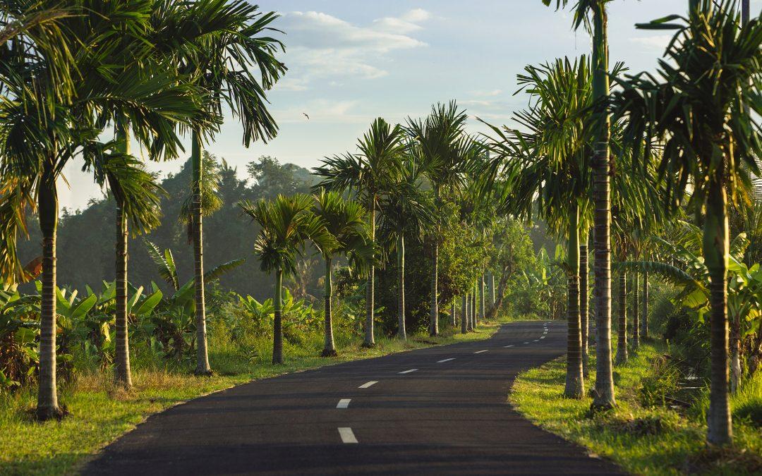 Comment aller de Ubud à Gilimanuk